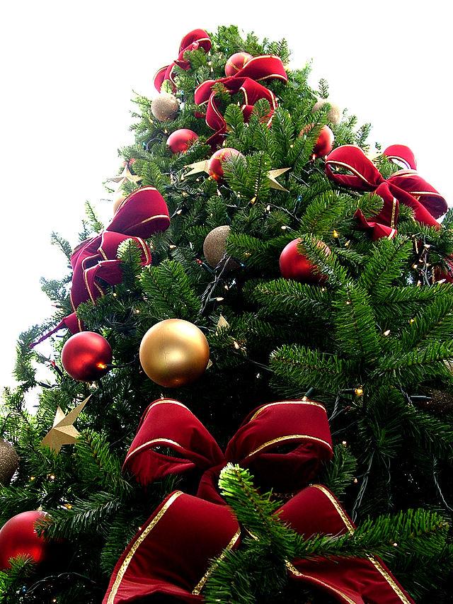 Reflexiones navideñas sobre el frío, el invierno y los falsos amigos